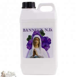 bottle water Banneux N.D - 5 L