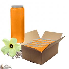 Candele Novena profumate al muschio - scatola da 20 pezzi