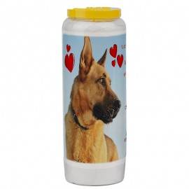 Novena candle for animals 3