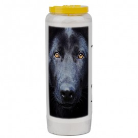 Novena candle for animals 5