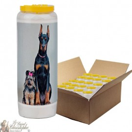 Novena candle for animals 6 - box 20 pieces