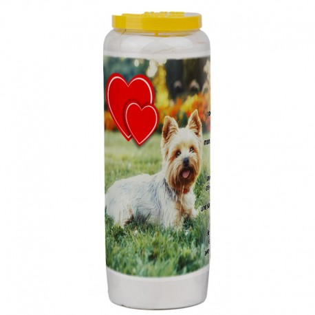 Novena candle for animals 7