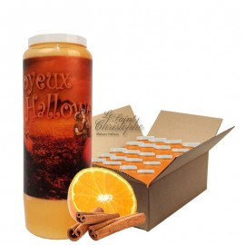 Novena candles orange-cinnamon scented Halloween pumpkin Box 20 pcs