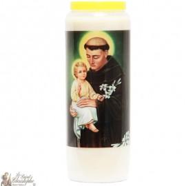 Novena Candle to Saint Anthony of Padua - Multilingual Prayer